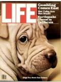 Life Magazine 1 January 1979 Dogs you never saw before 1/1/79: Life Magazine 1 January ...