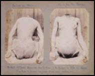Crime Album Stories: Paris 1886-1902 [ILLUSTRATED]: Parry, Eugenia
