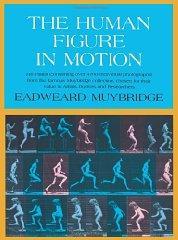 Human Figure In Motion, The: Muybridge, Eadweard