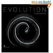 Evolution: Patrick Gries and