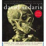 When You Are Engulfed in Flames: Sedaris, David: