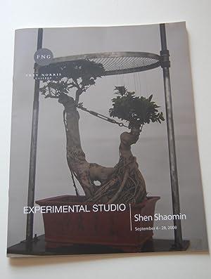Experimental Studio: Shen Shaomin