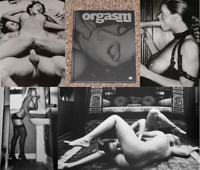 Art of the orgasm