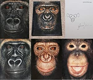 JAMES & OTHER APES: PHOTOGRAPHS BY JAMES: Mollison, James (Photographer)
