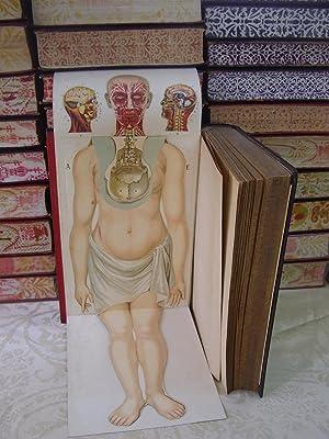 O NOVO TRATAMENTO NATURALISTA. Livro De Doutrina e De Consulta Para o Tratamento e a Dieta Conforme...
