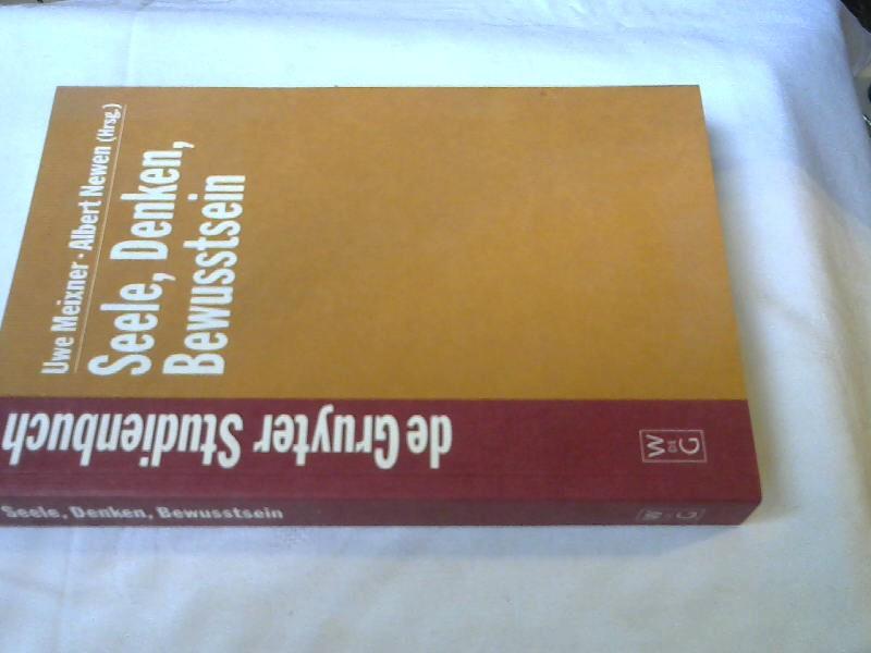 seele denken bewusstsein zur geschichte der philosophie des geistes de gruyter studienbuch