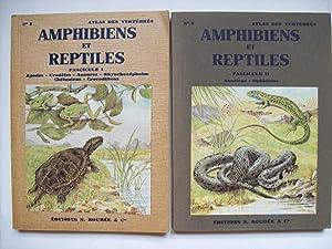 Petit atlas des amphibiens et reptiles -: ANGEL Fernand