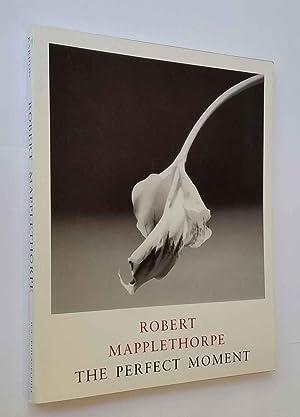 Robert Mapplethorpe: The Perfect Moment: Kardon, Janet ;