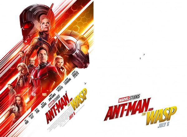 Ant Man And The Wasp Authentic Original 20 X 13 5 Movie Poster