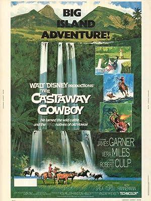"Castaway Cowboy - Authentic Original 30"" x 40"" Movie Poster"
