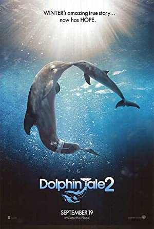 Dolphin Tale 2 - Authentic Original 27