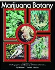 Marijuana Botany: An Advanced Study, the Propagation: Clarke, Robert Connell