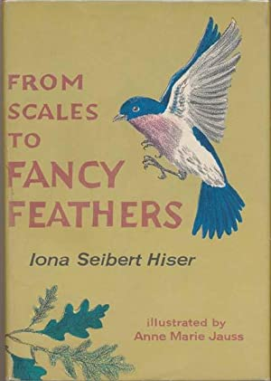 From Scales to Fancy Feathers: HISER, Iona Seibert