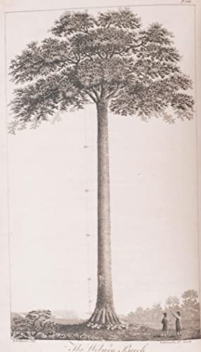 The Forest Pruner; or Timber Owner's Assistant. A Treatise on the Training or Management of ...