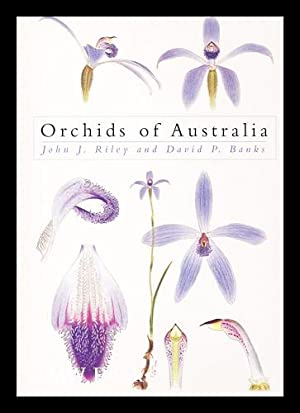 Orchids of Australia / by John J.: Riley, John J.