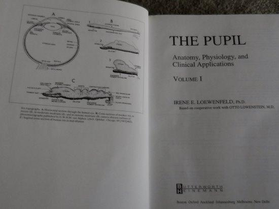 The Pupil: Anatomy, Physiology, and Clinical
