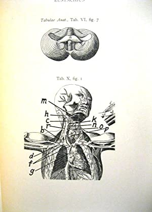 Three Transactions on the Cerebrum: A Posthumous Work (Anatomical Plates Volume): Emanuel ...