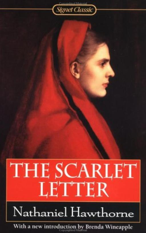 a mirror of hawthornes life in the novel the scarlet letter The persistence of theocracy hawthorne's the scarlet letter of english settlement in america as a mirror that reflects.