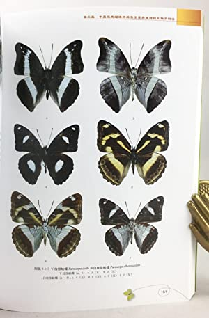 Ornamental Butterflies in China.: Chen, Xiaoming et al.