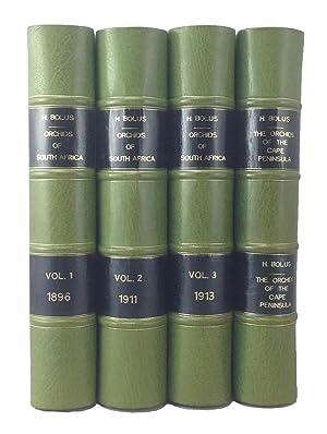 Icones Orchidearum Austro-Africanarum Extra-Tropicarum; or, figures, with descriptions, of ...