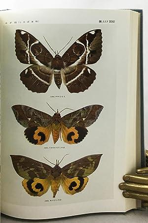 Icones Heterocerorum Japonicorum in Coloribus Naturalibusm, volume 2 (of 2 volumes).: Teiso, Esaki ...