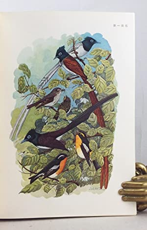 A Natural History of Japanese Birds (=Nippon no Chorui to Sono Seitai), in 2 volumes (1933-1934-...