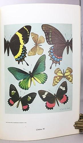 Mariposas de Mexico, Fascículo I: Introducción y Generalidades Superfamilia ...