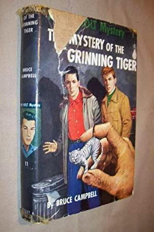 A Ken Holt Mystery - The Mystery of the Grinning Tiger: Campbell, Bruce