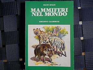 IL LIBRO DELLA V CLASSE ELEMENTARE. RELIGIONE: ZAMMARCHI A., ANGELINI