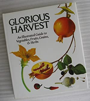 Glorious Harvest: An Illustrated Guide to Vegetables, Fruits and Herbs: Bianchini, Francesco; ...