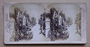 In the Catacombs, Brussels, Belgium.: Original Stereoview Card.
