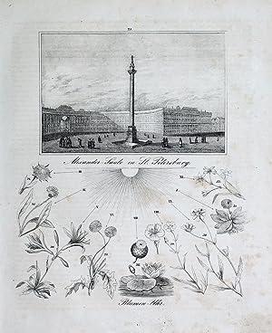 """Alexander-Säule in St. Petersburg. Blumen-Uhr"""" originale Lithographie"""