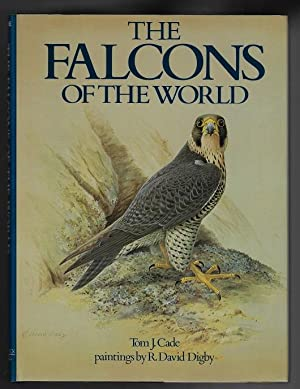 The Falcons of the World