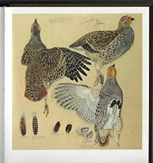 Tunnicliffe's Birds: Measured Drawings by C.F. Tunnicliffe RA