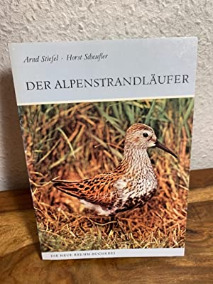 Der Alpenstrandläufer. (Calidris alpina).