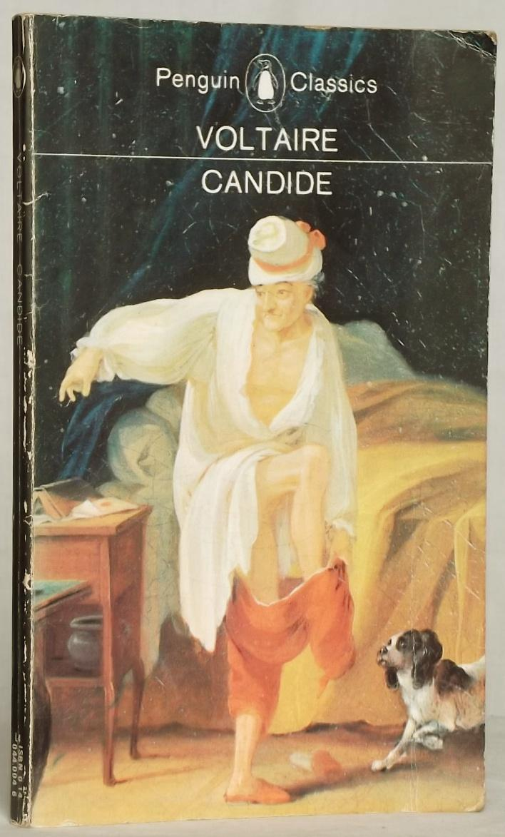 the dangers of optimism in candide a book by voltaire