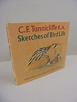 C. F. Tunnicliffe R.A. Sketches of Bird Life