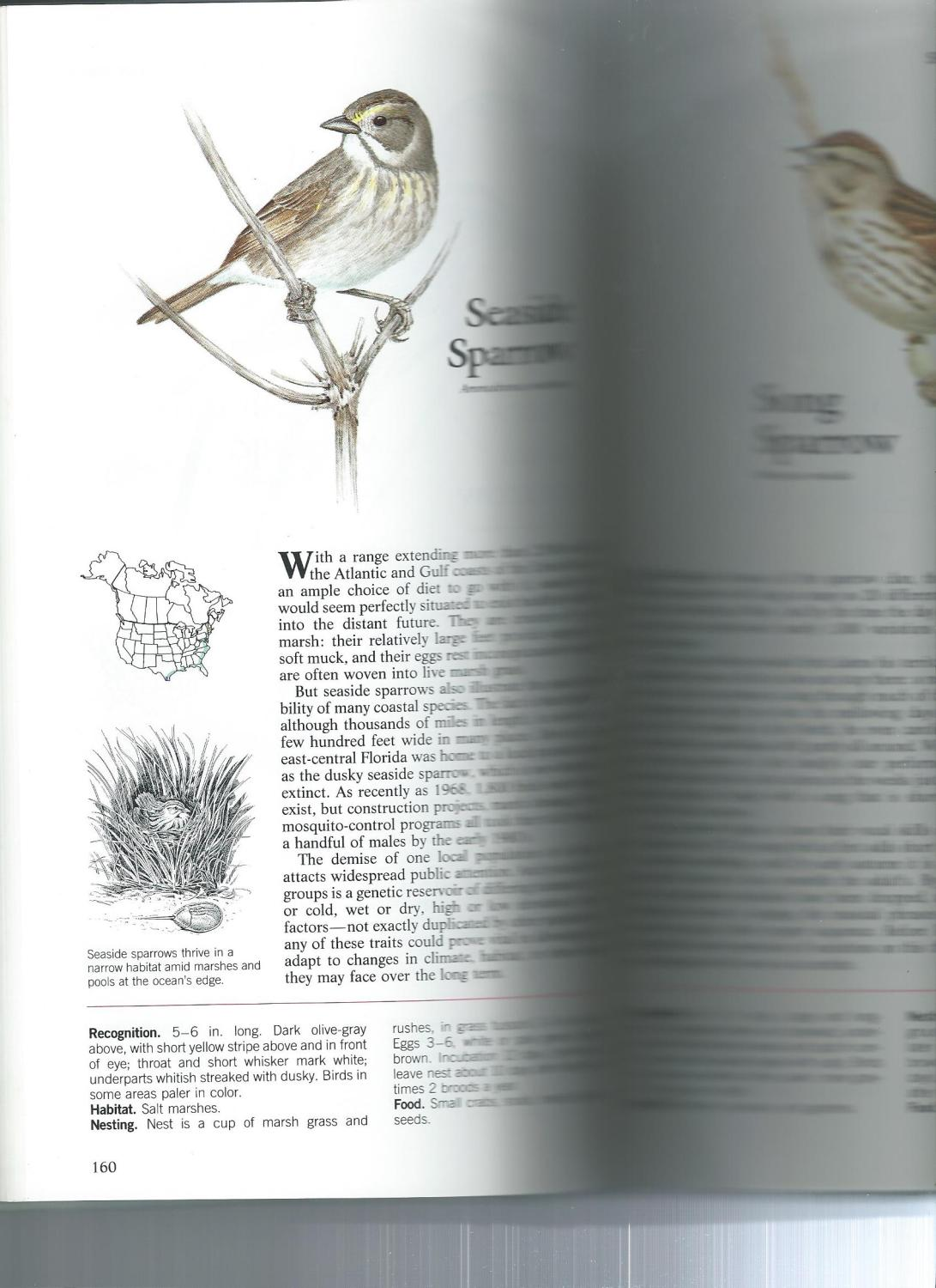 ... Book Of North American Birds: Reader's Digest ...