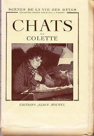 Chats *: COLETTE :