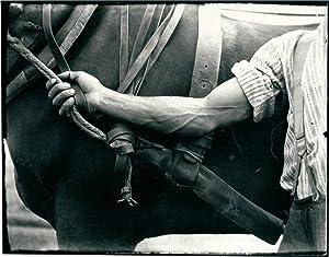 Terres d'ombres 1915-1965. Itinéraire photographique de Gustave Roud *: ROUD Gustave] ...