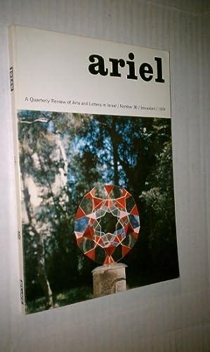 Zvi Hecker: The Responsibility of the Architect: Hazleton, Lesley