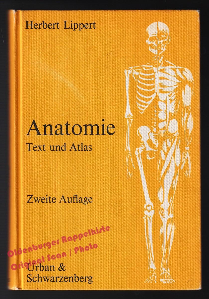 anatomie text und atlas von herbert lippert - ZVAB