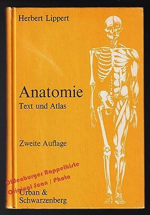 Anatomie - Text und Atlas. Deutsche und: Lippert, Herbert