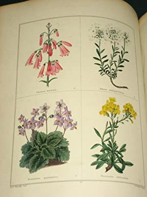 THE BOTANIC GARDEN; Consisting of Highly Finished Representations of Hardy Ornamental Flowering ...