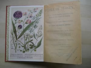 FLORA OF SUSSEX or a List of the Flowering Plants and Ferns Found in the County of Sussex with ...