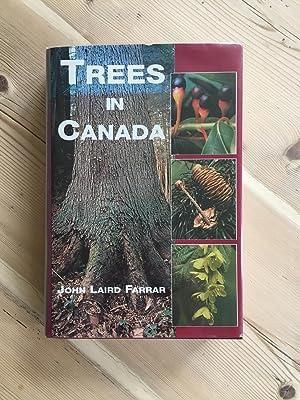 TREES IN CANADA: John Laird Farrar