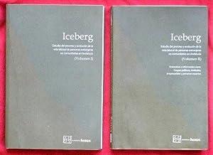 ICEBERG. Estudio del proceso y evolucion de la vida laboral de personas extranjeras no comunitarias...