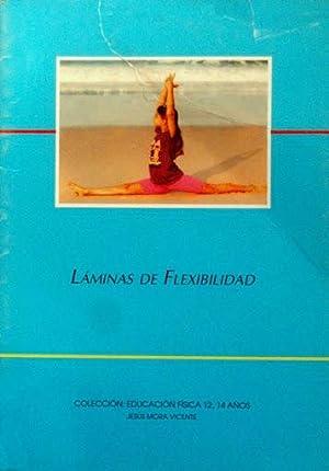 LAMINAS DE FLEXIBILIDAD (Educacion Fisica 12-14 años): MORA VICENTE, Jesus
