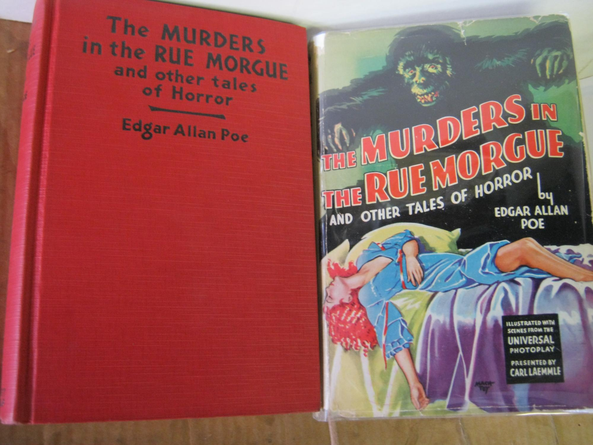 the murders in the rue morgue analysis
