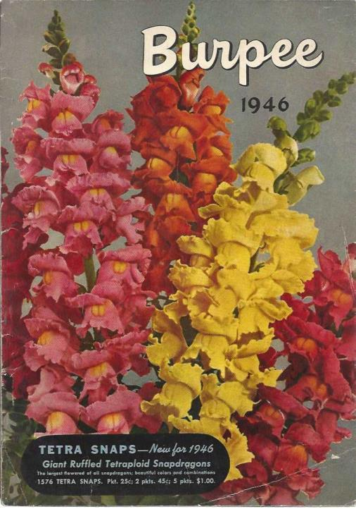 Burpee 1946 - Seed Catalogue, W. Atlee Burpee Co.